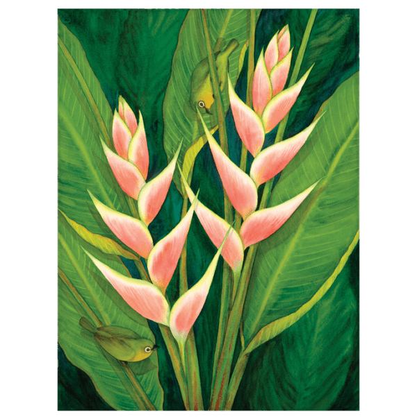 Heliconia & White Eyes Giclée