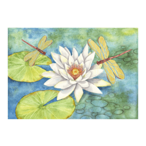White Lotus, Gold Dragonflies Giclée